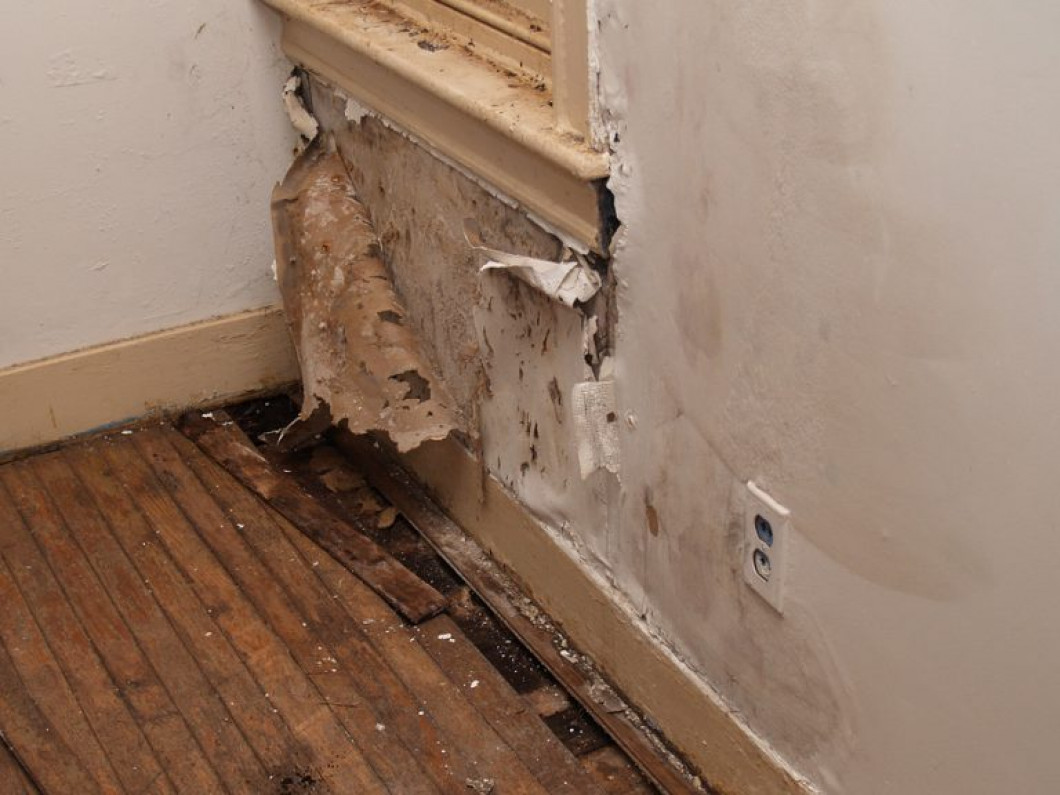 Choose us to handle your water damage emergencies